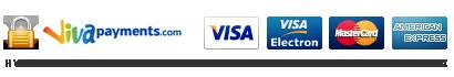 Viva pay Icon
