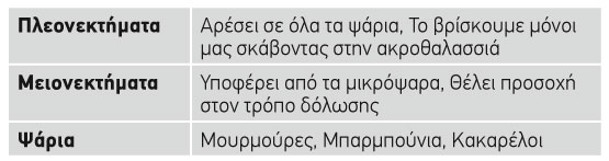 kokkino-ths-ammou_pinakas