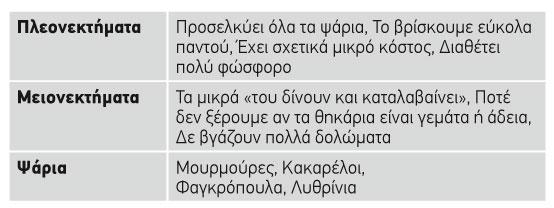 mauro-skoulhki_pinakas