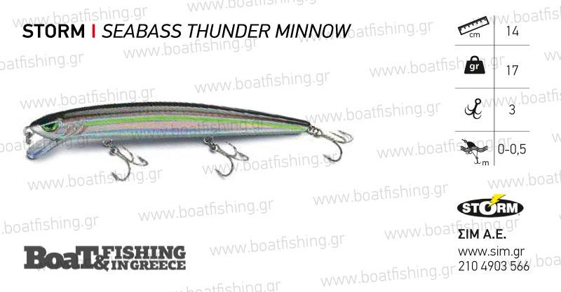 storm_seabass-thunder-minnow