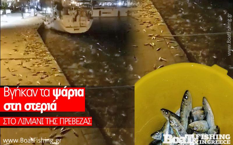 Που βγαίνει με πολλά ψάρια